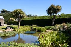 Stillness (Jocey K) Tags: newzealand bankspeninsula southisland motukarara irisgarden iris pond lilypond reflections shed barn building trees clouds sky flowers
