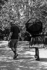 Strolling in the Park (Thad Zajdowicz) Tags: people man woman walkers fashion parasol skirt boots monochrome blackandwhite black white bw candid strollers arlingtonpark pasadena california zajdowicz canon eos 5dmarkiii dslr digital path lightroom shadow light highcontrast couplepeaceful serene tranquil unposed noiretblanc