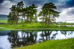 Treeflection (Brian Travelling) Tags: trees reflecting treeflecting outdoors water loch lake clouds scotland scenery scenic scottish pentaxkr pentax pentaxdal peaceful peace green tulla