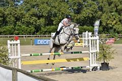 DSC_1149 (2) (ploufjf_64) Tags: paus show jumping chevaux pau 2016