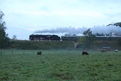 2016-09-17; 031. Loc 01 2066-7 met Fotopersonenzug 401. Ettenhausen (Martin Geldermans; treinen, Zge, trains) Tags: kohlefrdampfstahlfrparis plandampf2016 0120667 5036488 5013800 5035019 eisenach ettenhausen steamlocomotive stoomtrein steamtrain stoom stoomlocomotief dampfzge dampf dampflok trein train