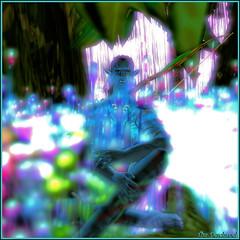 A colorful dream (Tim Deschanel) Tags: tim deschanel sl second life pandora universe navi planet avatar pegase couleur couleurs color colors film movie rve dream