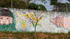_DSC6020 (Mario C Bucci) Tags: saida fotografia pacheco paulo tellis mario bucci hugo shiraga fabio sideny roland grafites volu ii