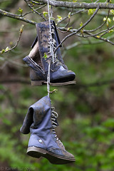 10/52 - boots (Karen Burgoyne) Tags: tree canon scotland boots 10 aberdeen hanging northeast 1052 52week 52weekchallenge