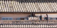 Amongst the rooftops (jayteacat) Tags: girls italy rome roma italia rooftops tiles piazzadellarotonda girlsontheroof
