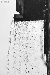 It's Raining It's Pouring (13/05/2014) (Matthew Trevithick Photography) Tags: blackandwhite ontario london wet rain weather random matthew may stormy rainy gutter grainy pouring 2014 eavestrough trevithick nikond40x matthewtrevithick mtphotography