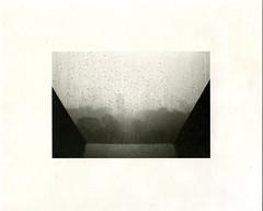 (?) Tags: darkroom print ilford warmtone fiber black white