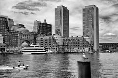 Summer Day at the Boston Waterfront (WilliamND4) Tags: boston waterfront boat buildings water bird city nikon1 nikon1v3 nikonv3 blackandwhite bw blackwhite