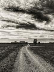 Camino al Montgri (EXPLORE 11-08-2016  #50) (jfraile (OFF/ON slowly)) Tags: baixemporda girona camino nubes blancoynegro montgri blackandwhite paisaje landscape jfraile javierfraile