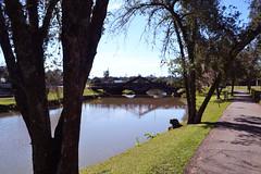 Curitiba - 07/2016 (Elisama Oliveira) Tags: parquebarigui curitiba park brazil outside nature beautifulplace