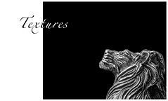 29/52: Textures (hehaden) Tags: glass monochrome port mono shot head lion pewter textured royalselangor 52photos2016 frankliwild