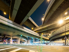 Awaza Intersection and a plant () (christinayan01) Tags: japan osaka night elevated expressways highway hanshin junction intersection overpass road