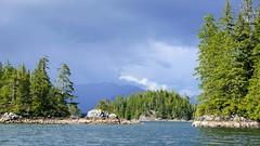 P1480932 (Tipfinder) Tags: kanada canada vancouverisland portalberni tofino ucluelet pacificrimnp long beach bearwhatching hotspringcove