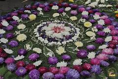 """Commemoration Day of the Smolensk Icon of the Mother of God """"Hodegetria"""" / Праздник иконы Пресвятой Богородицы Смоленской Одигитрии (56)"""
