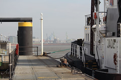 Harbour landscape (Foto-Aestheticus) Tags: harbor harbour landscape foggy ship boat jetty sun sunshine bremerhaven outdoor outside industrial rope ropes yellow black white light canon canonphotography summer
