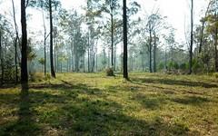 542 Hayne Kite Millar Road, Cherry Creek QLD