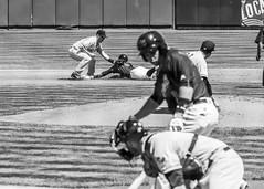 Rivercats Baseball (micadew) Tags: blackandwhite bw blackwhite baseball sacramento bnw mysacramento