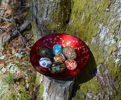 DSC_0517-1 (Chaumurky) Tags: forest easter folkart eastereggs easteregg paintedeggs pisianki