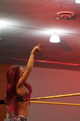 Sasha Banks holds arm in the air (Eric Broder Van Dyke) Tags: california arm air sasha banks wwe holds 2015 axxess sashabanks