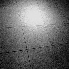 102 (Seefahrer) Tags: life road light bw white black true way square blackwhite order border line squareformat trust law straight rule