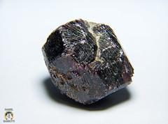 Garnet 004 (Daniel Barbutti) Tags: stones mineral garnet phanzer
