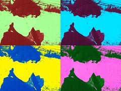 DSCF5505 (Shi Devotion) Tags: flowers blackandwhite selfportrait art nature writing vintage painting photography video flickr poetry artist drawing meme paintingwithlight myart deviantart shortstory riddle facebook selfie urbex youtube diaryentry motivationalposters twitter 365selfies creepypasta reactiongif shidevotion dailyselfie selfietherapy