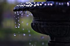 Anglų lietuvių žodynas. Žodis it never rains but it pours reiškia bėda viena nevaikšto lietuviškai.