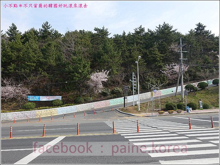 麗水海上纜車與紫山公園 (1).JPG