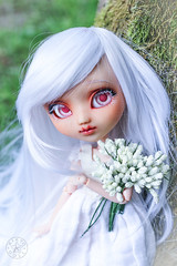 Eileen, ma douce lumire (Kiky) Tags: doll pullip eileen douce lumire marie wedding married bride blanc cheveux wig white pure poupe kikyo custom albinos pale light japan japonais raliste realistic fleur flower