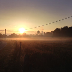 misty morning (jochenlorenz_photografic) Tags: blue summer orange bike misty fog sunrise office nebel mountainbike mtb fields bikeride sonnenaufgang goldenhour iphone mistymorning iphoneography summer2016 iphoneonly