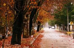BRRRRR EL INVIERNO ESTA AQUI (su-sa-ni-ta) Tags: argentina paisaje colores julio cordoba frio invierno2016
