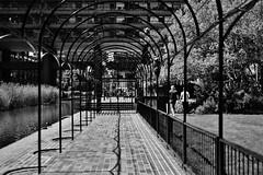 archway (coffeebucks) Tags: barbican barbicancentre brutalism modernism barbicanestate cityoflondon london architecture chamberlinpowellandbon lakesideterrace