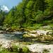 Mostnica patak - Mostnica stream