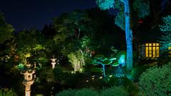 DSC05476 (regis.verger) Tags: temple zen nuit parc nocturne asiatique vgtal maulvrier