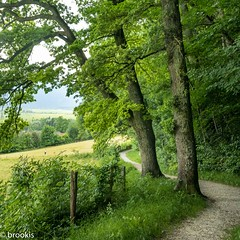 Path with a view (brookis-photography) Tags: murnau moos path trees green view