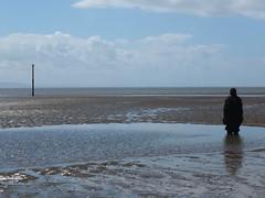 DSCF0726 (SierPinskiA) Tags: sea shells beach liverpool sand ironman pools barnacles ironwork mayday seashore merseyside anthonygormley irishsea 2016 anotherplace crosbybeach blundellsands fujixs1
