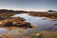 Dinard (France, Bretagne) (AleX.D - SuShY**) Tags: canon canon7d 1022 uga pose longue poselongue mer sea algues hdr photomatix paysage landscape