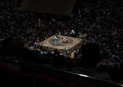Overview image of the interior of the ryogoku kokugikan sumo arena during the sumo tournament, Kanto region, Tokyo, Japan (Eric Lafforgue) Tags: 2029years 9people adultsonly arena asia asian athlete big champion clash colourpicture competition competitors crowd cultural culture fat fight fighter fullframe groupofpeople horizontal indoors inside japan japan161066 japanese kokugikan leisure male martial men mixedagerange overview overweight people ring ritual ryogoku spectators sport stadium strength sumo tokyo tournament tradition traditional upper view wideangle wrestlers wrestling kantoregion giappone   japo japonia japonsko japonya jepang jepun  oo