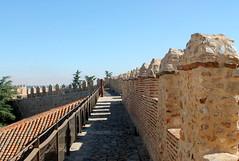 Visita a las murallas (rube_sacrrtan123) Tags: camino avila murallas