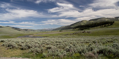 SAFc-160619-4117 (wschafmann) Tags: lnder nationalpark region usa umgebung yellowstonepark