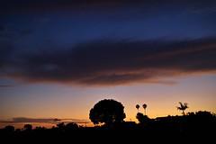 JL5A3015 (BorrowedLightPhoto) Tags: sunset sky clouds halo doughnut portal 92117