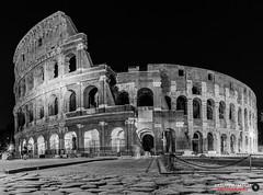 Roma - Colosseo MG_5340 (FILIPPO MATTIA) Tags: amphitheatrum flavium roma rome colosseo colosseum scavi arte art black white italy italia anfiteatro flavio romano