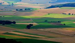 Rural Germany (ericgrhs) Tags: hinterland hessen marburg rural felder fields countryside marburgbiedenkopf agriculture landwirtschaft