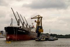 Rotterdam harbour (cerfon) Tags: rotterdam nederland