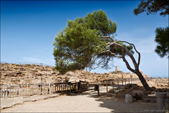 nora (heavenuphere) Tags: nora pula provinceofcagliari cagliari sardegna sardinia sardinie italia italy europe island roman preroman town archaeological site rocks tower lighthouse windswept tree 24105mm