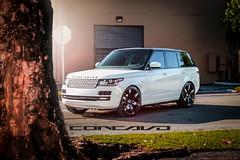 Range Rover on Concavo CW-6 (WheelsPRO) Tags: rangeroveronconcavocw6 rangerover rangeroverwheels concavowheels ukraine wheelspro wheelsproukraine wheelsprorussia kazakhstan vossen lexani concavo bbs velgen agwheels asanti kmc xoluxury niche zinik avarus giovanna kokowheels rohana saviniwheels
