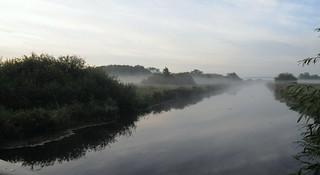 Die Sorge erwacht an einem dunstigen Morgen; Bergenhusen, Stapelholm (1)