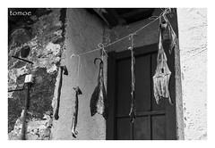 Al sol... (Natalia Lozano) Tags: bw bn blancoynegro bnw monochrome moncromo fish seco dry pescado pez house traditional tradicional tradicin asturias