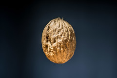 96/365 Nuez (mabahamo) Tags: walnut nutshell nuez cscara mabahamo