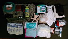 What's In My Bag 4.27.2015 (Klara Kim) Tags: bag whatsinyourbag mybag whatsinmybag